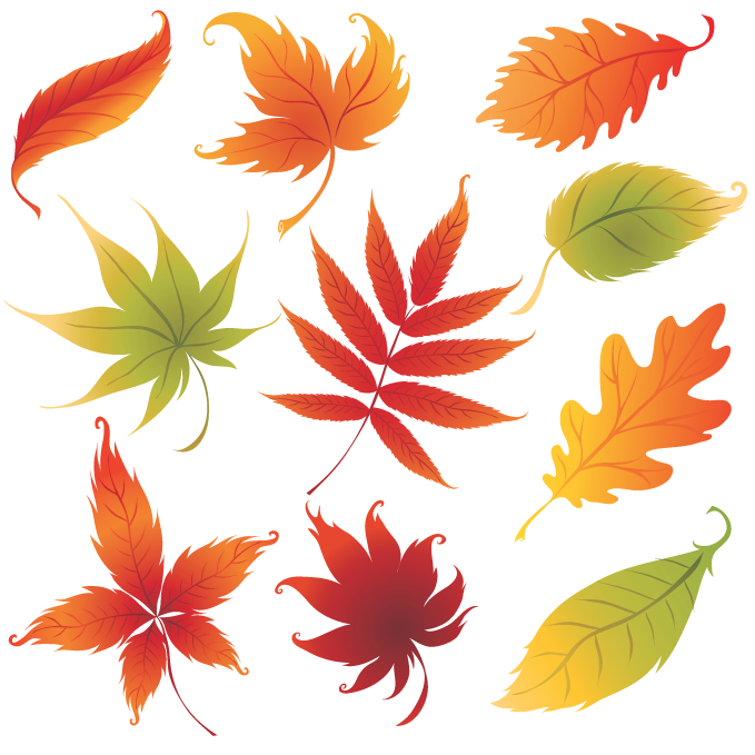 colorful_leaves